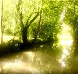 Green Venice Canal excursion in la Rochelle France