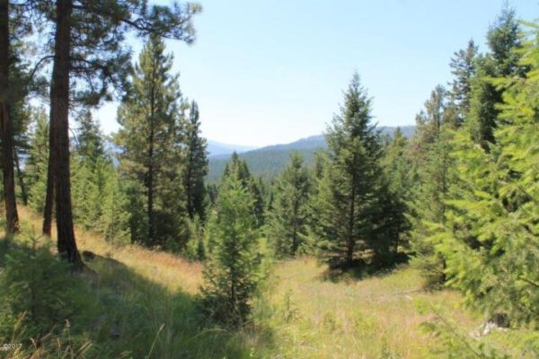 Tract 2 N. Ranch Hill Road, (MLS#21906410)