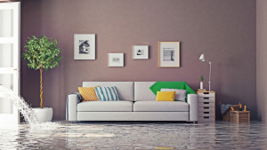 """ALT=""""sofa in flooded living room; home alone, Insurance Problem Solver"""""""