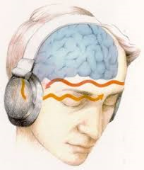 Did You Know a Binaural Beat Can Affect Your Brainwave Activity?