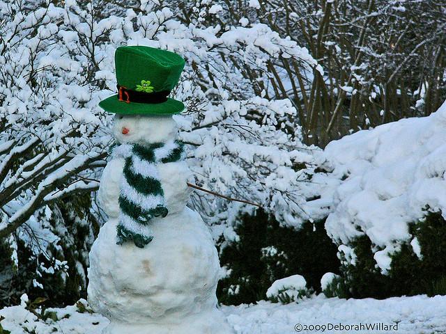Snow Leprechaun