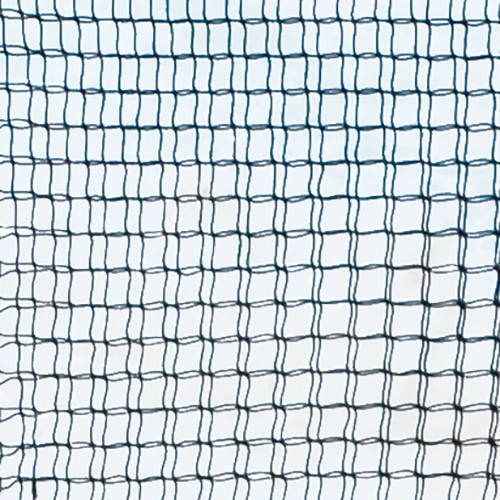Collegiate Fielders Screen Net 10 x 10