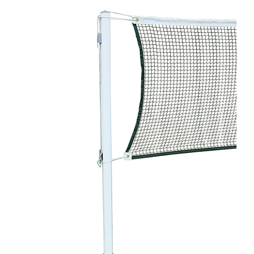 Easy Play Badminton (Posts Only)