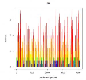Blaine Bettinger AncestryDNA Match Pileups