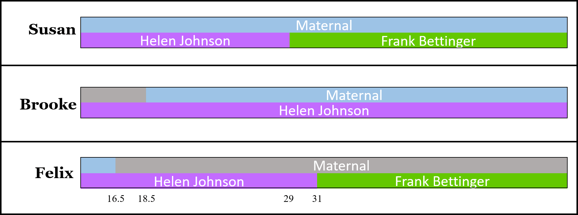Visual Phasing: An Example (Part 5 of 5) - The Genetic Genealogist