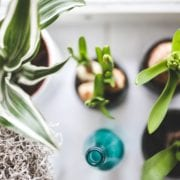 How To Join The Clean Beauty Movement