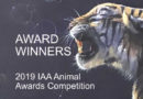 Award Winners of the 2019 Animal Awards Competition