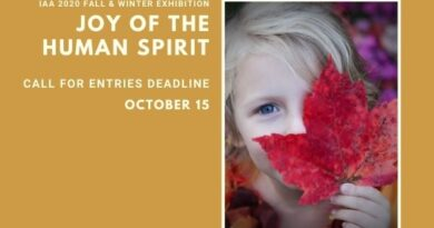 IAA 2020 Fall / Winter Online Exhibit call for entries – Deadline extended