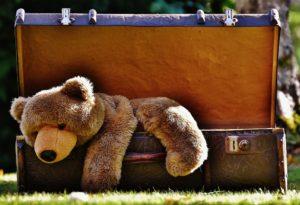 Stuffed Bear in a suitcase