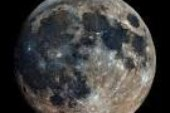Wolf Super Moon January First And Other Moony Stuff