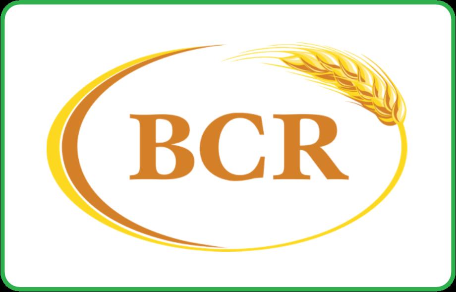 Gold Sponsor - BCR2