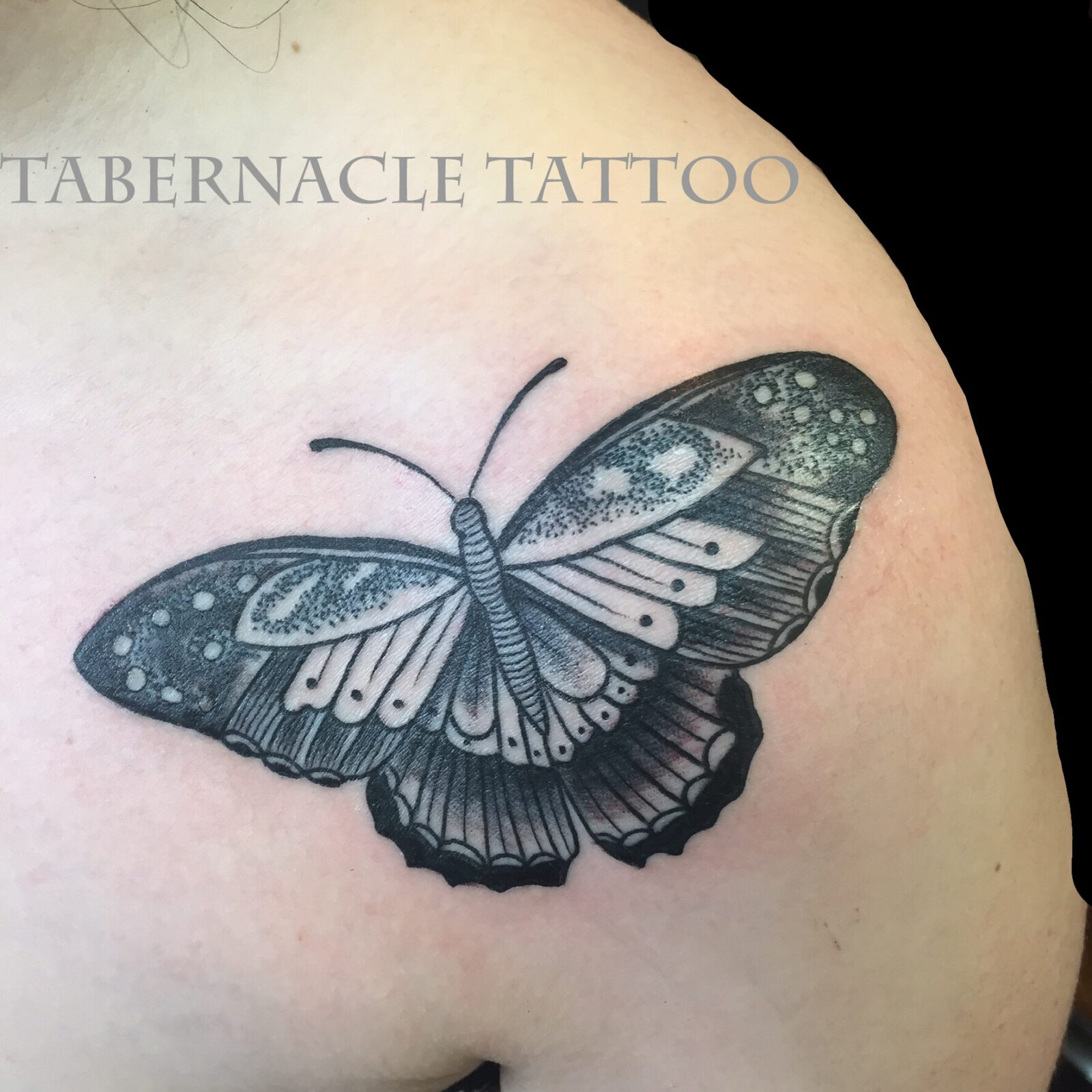 Butterfly tattoo in black and grey dot work tattoo