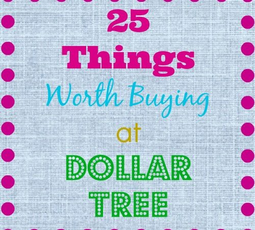things worth buying dollar tree