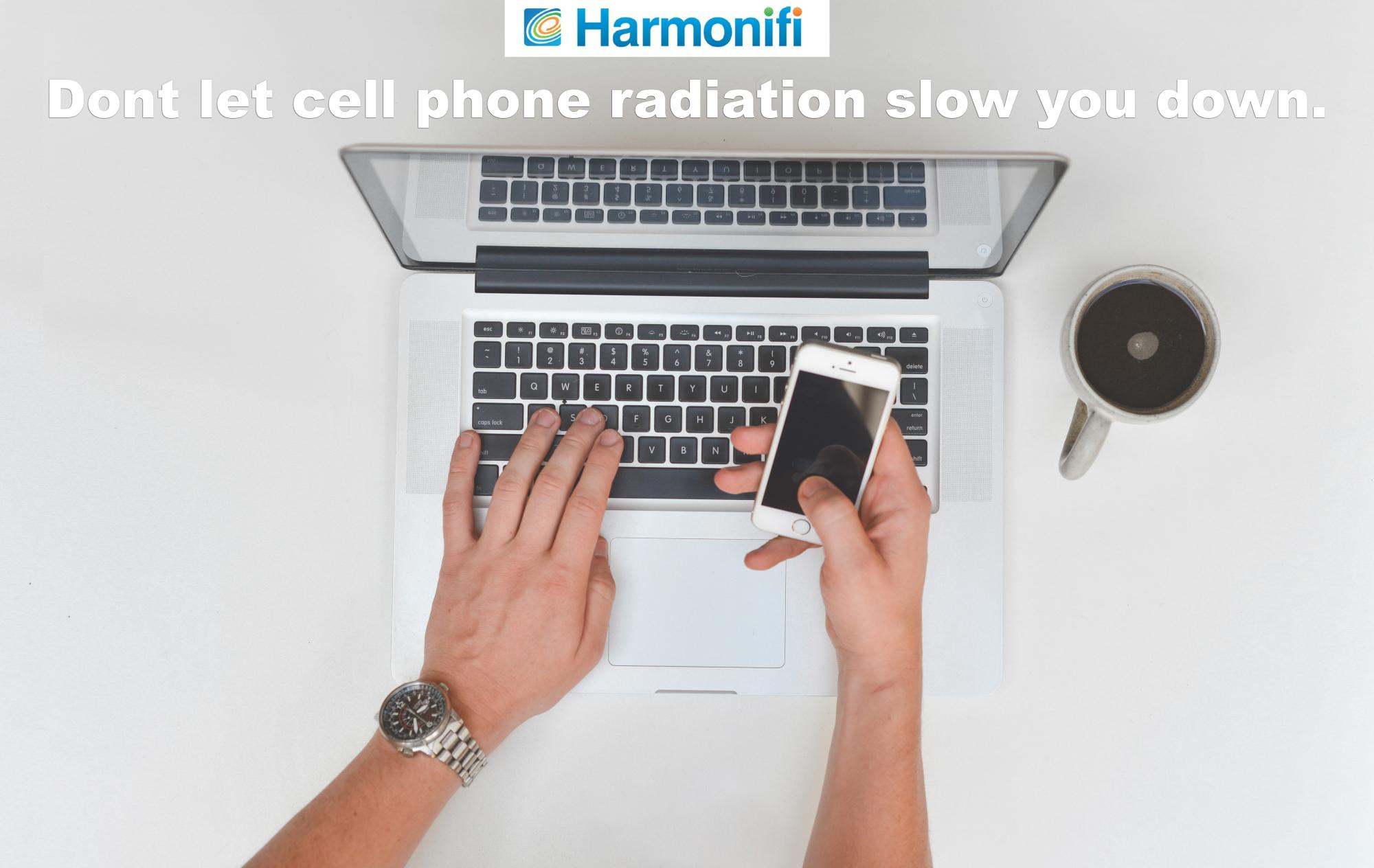 harmonifiad2
