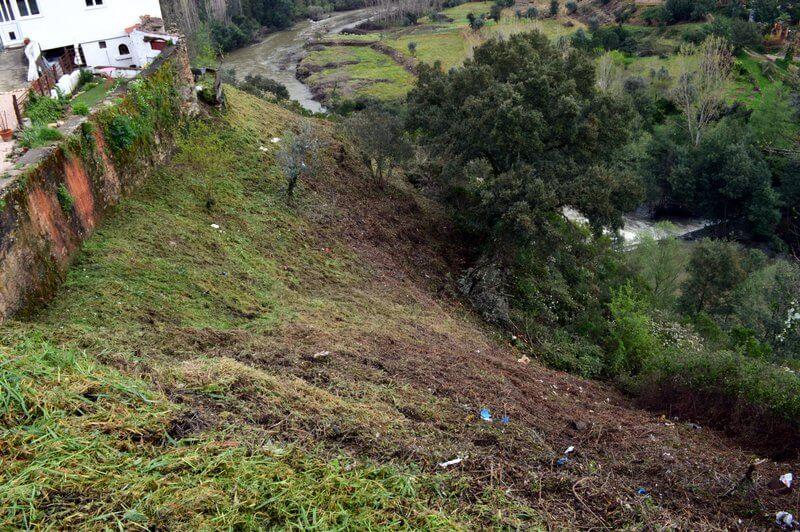 Freshly strimmed hillside