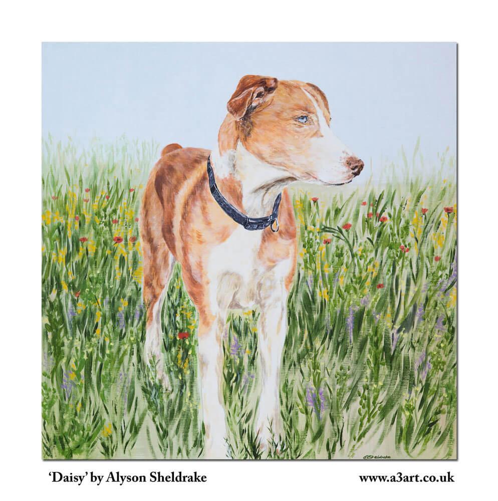 Pet portrait: Daisy the dog