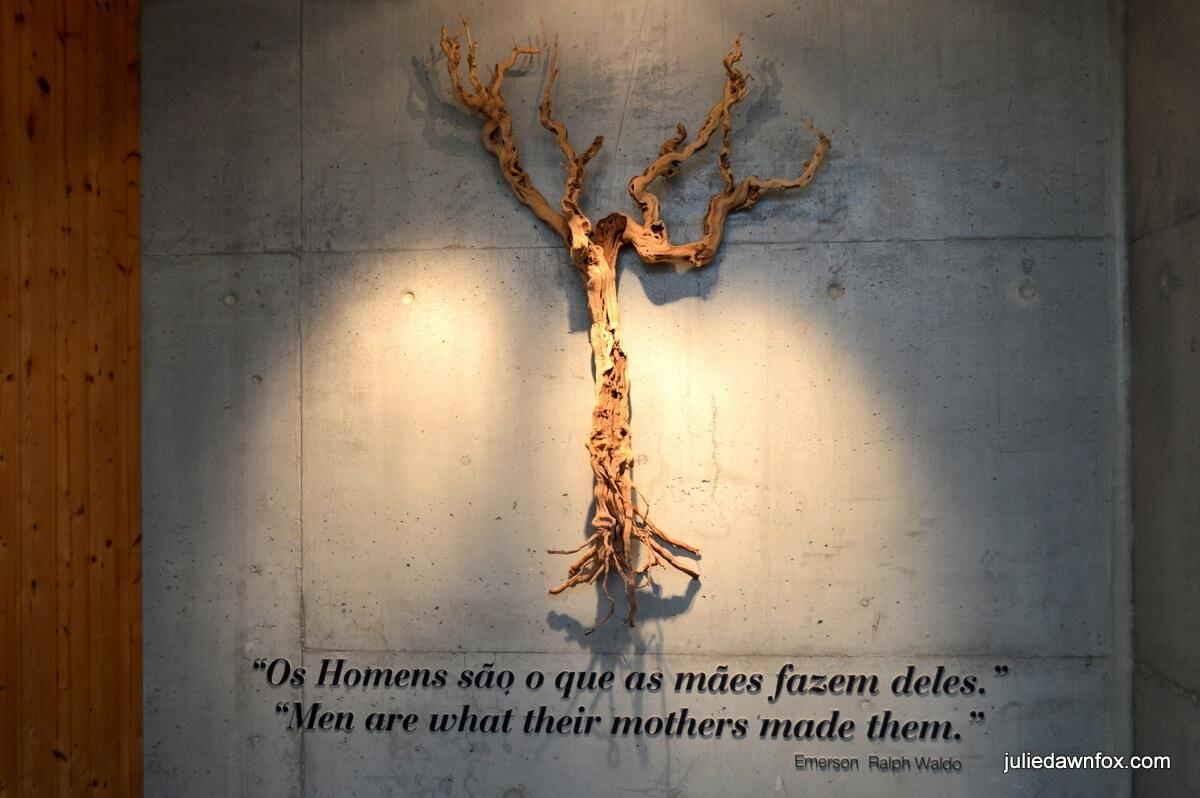 Sandblasted grape vine and poetry at Adega Mãe winery. Men are what their mothers made them.