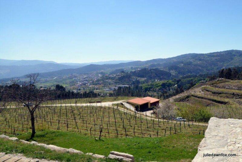 Views and vineyards, Quinta de Santa Cristina