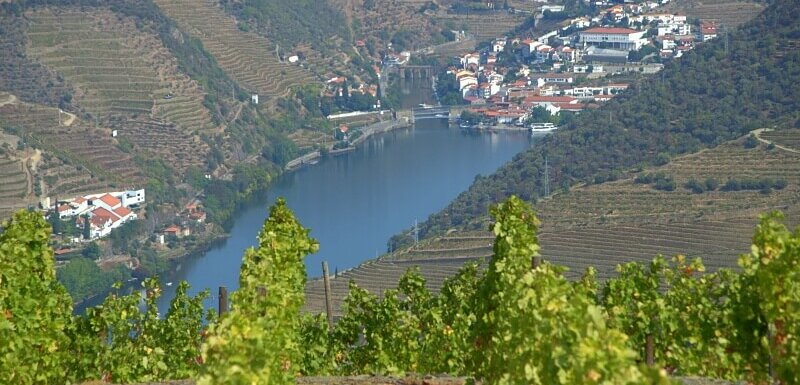 Pinhão and Douro River through vineyards