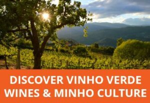 5-day private guided tour of Northern Portugal's vinho verde wine region. This short break combines unique Portuguese wines with regional delicacies, outstanding architecture, centuries of history and stunning scenery.