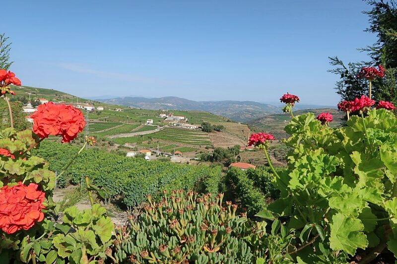 Landscape around Ervedosa do Douro