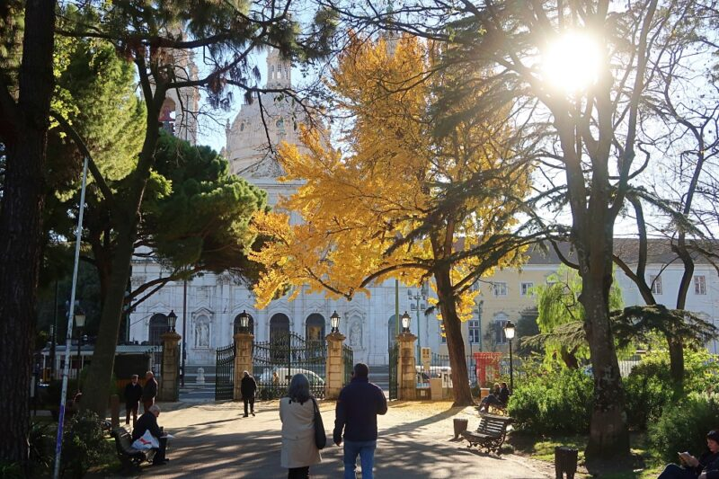 Jardim da Estrela and Basilica, Lisbon, on a December afternoon. Photography by Julie Dawn Fox