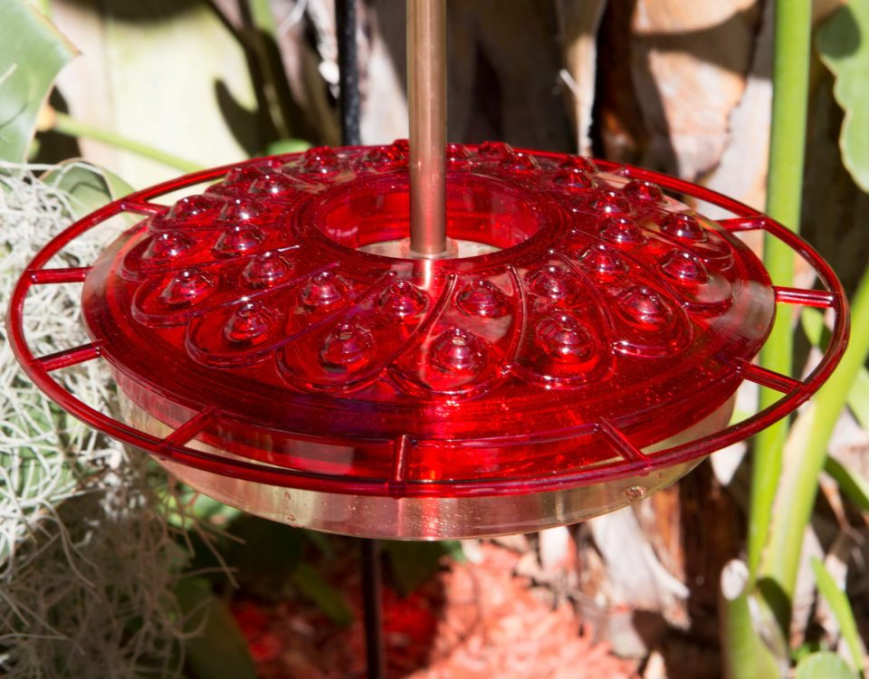 32-Port Hummingbird Feeder