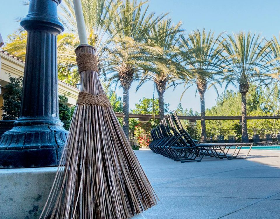 It's the Ultimate Garden Broom!