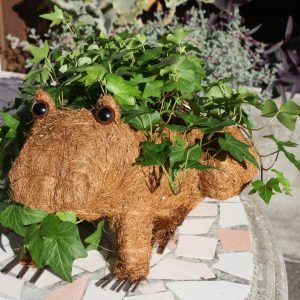 Frog Coco Planter by ShopDePalma