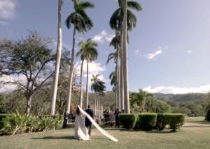turtle bay wedding video
