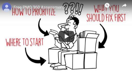 Project Portfolio Management Assessment