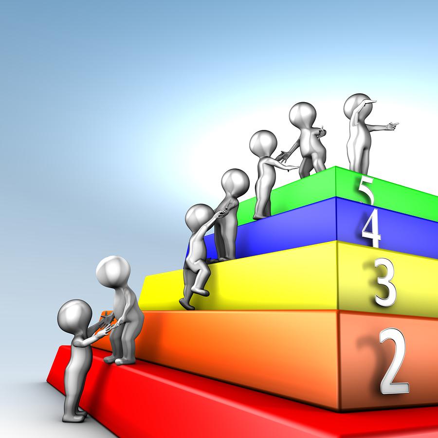 Portfolio Management Trends and Insights