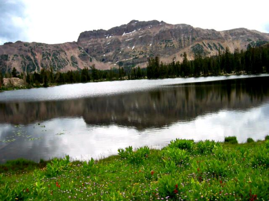 Bald mountain with patchy snow above a still lake and wildflowers.