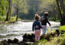 Crecer en la naturaleza reduce enormemente tus desórdenes mentales
