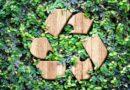Eco Kupa Biodegradables
