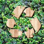 Eco Kupa Biodegradables