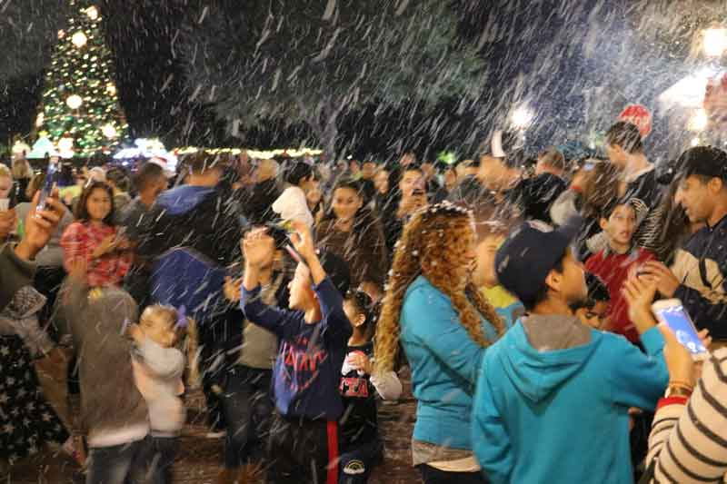Celebration, Fl Now snowing Nightly