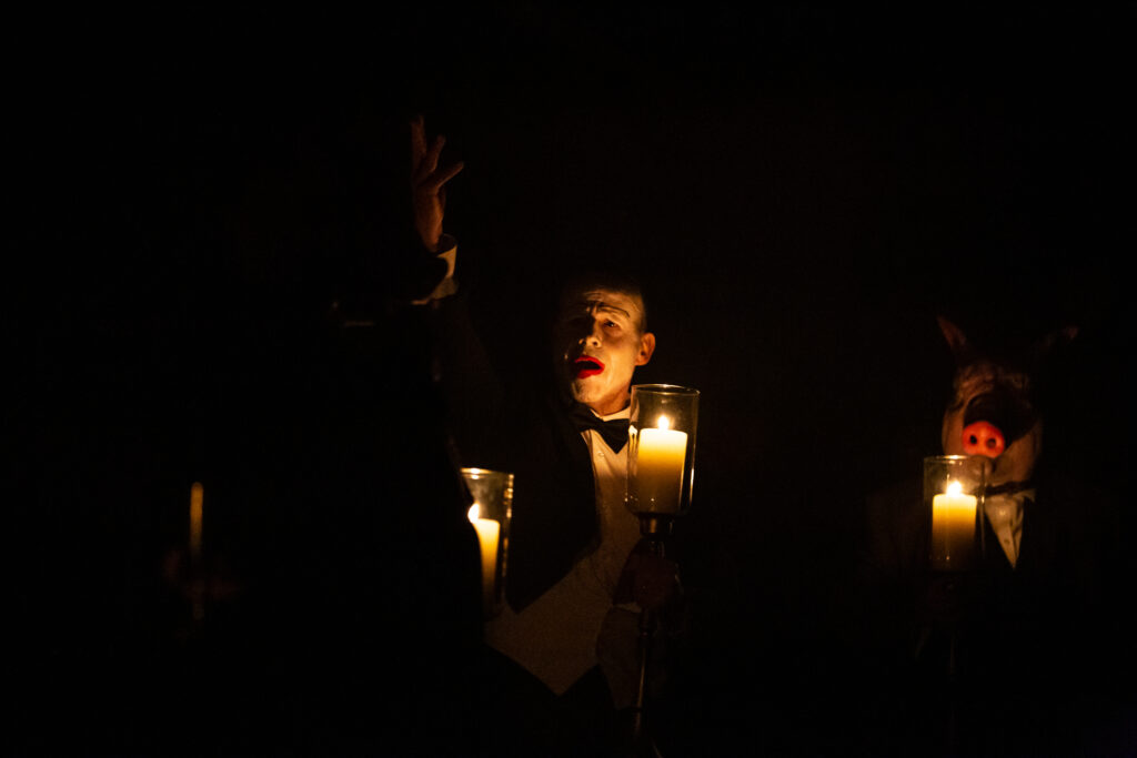 Image result for mephisto, gate theatre