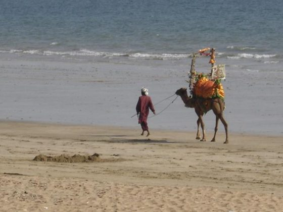 Hawke's Bay Beach: The Popular Tourist Attraction in Karachi, Sindh