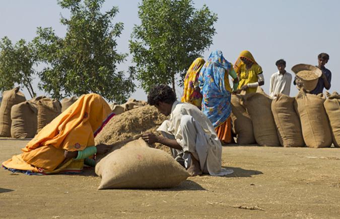 Golarchi Taluka: The Newly Populated City of Badin, Sindh