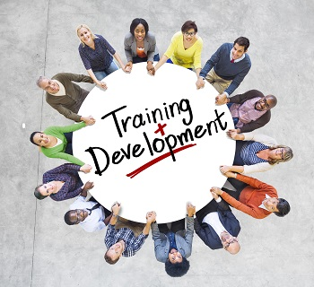 Professional Development Programs in Sindh