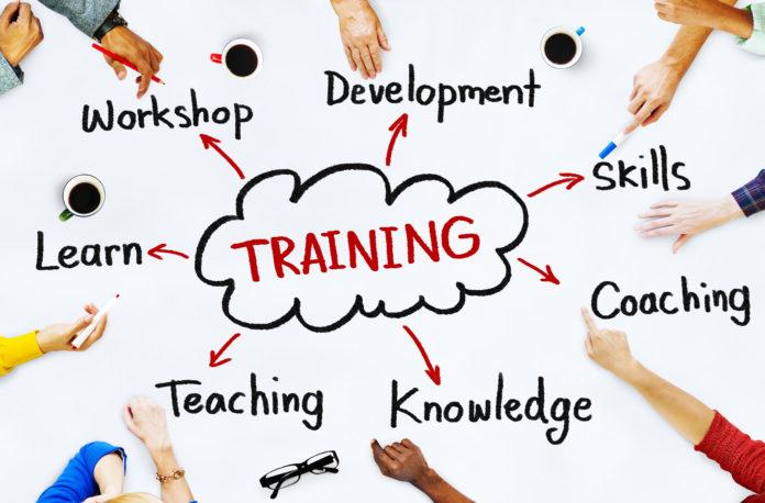 Skill Development Programs in Sindh