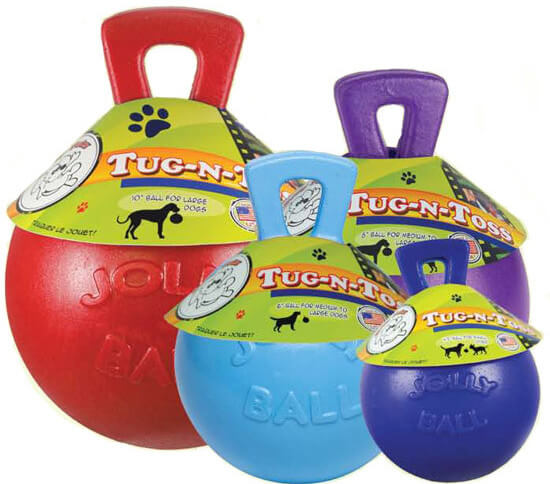MyDogLikes reviews the Jolly Ball in our search for the toughest dog toy!