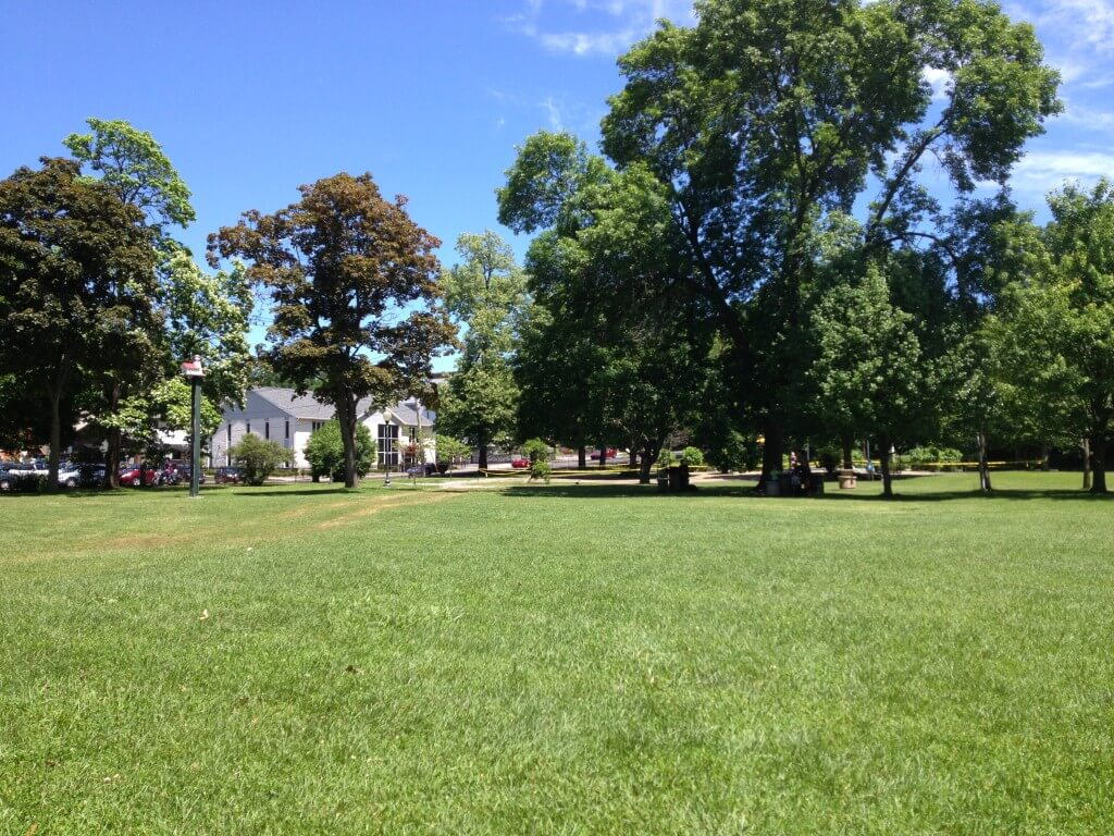 Gorgeous trees and lots of open space