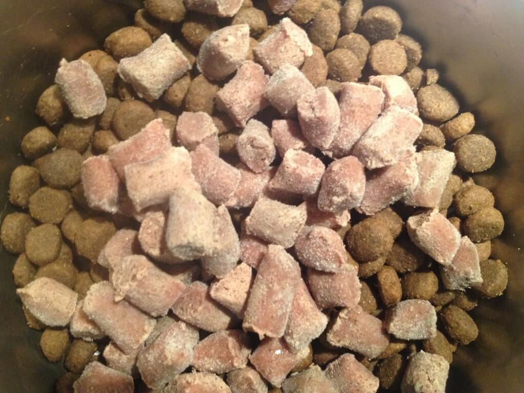 Transitioning our dogs to raw with frozen bites from Nature's Variety