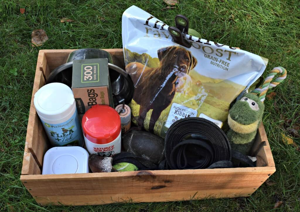 A close look at our essentials for traveling with dogs. We try to stay prepared and keep most of these items in a pre-packed bag.