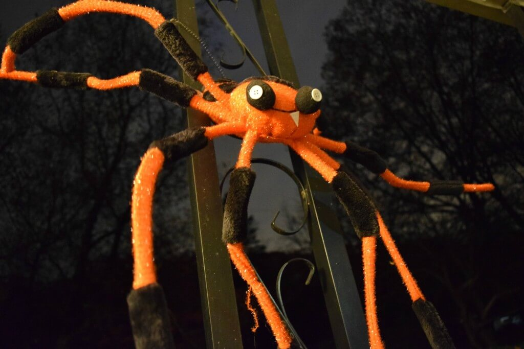 Our creepy Halloween spider decoration on the front porch