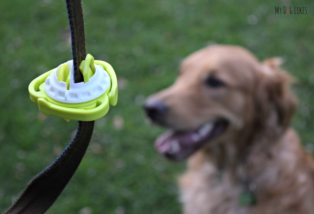 The Fifth Paw leash attachment makes dog walking easier and more enjoyable