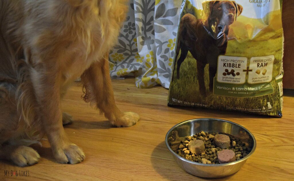 Reviewing Nature's Variety Instinct Diet - Kibble with Raw Boost and Raw Medallions