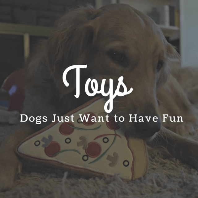 MyDogLikes 2015 Holiday Gift Guide - Toys - Dogs just want to have fun